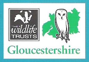 wildlife-trust