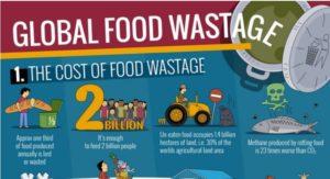 global-food-waste-issues-myzerowaste